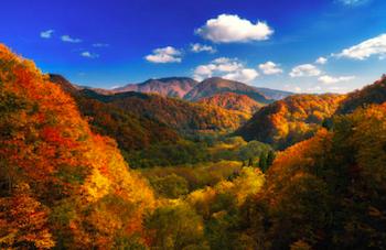 秋田県の出張撮影スポットの紅葉