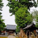 赤塚諏訪鳥神社(板橋区)