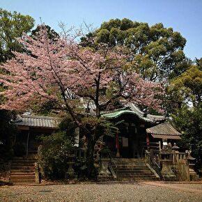 郡神社(高槻・茨木・摂津)